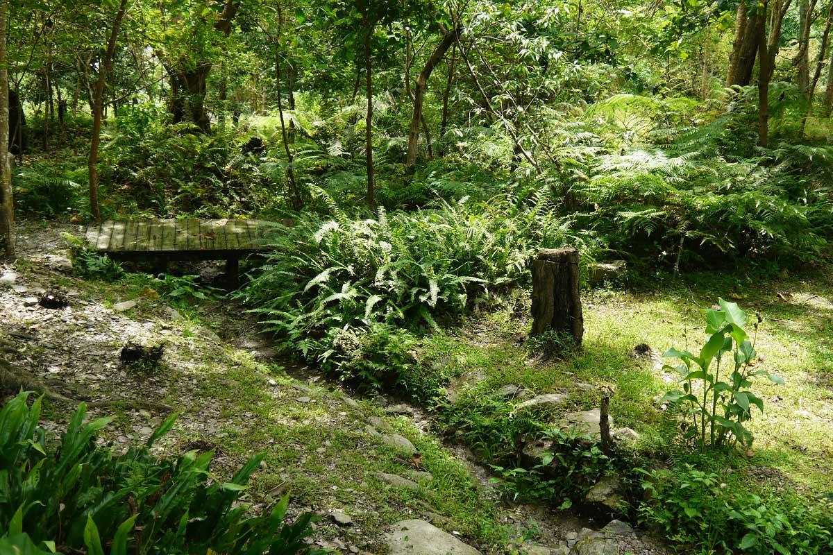 2013 阿塱壹古道 3 - 知本國家森林遊樂園